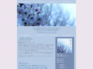 藤野由佳|「桜の夢の中」