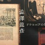 澁澤龍彦 ドラコニアの地平〜キネマ・イン・ザ・ヨルガ