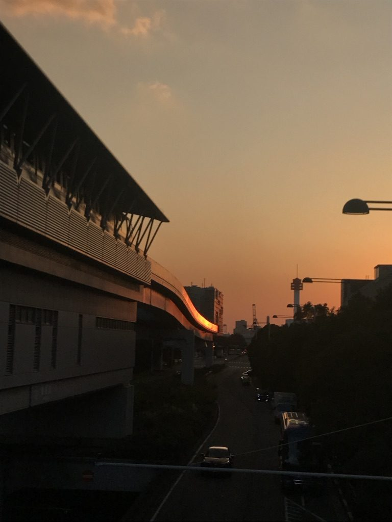 Susumu Hirasawa in Zepp Tokyo