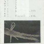 Joseph Cornell in Kawamura Memorial DIC Museum of Art